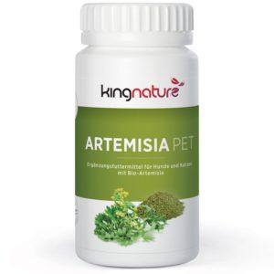 Artemisia PET